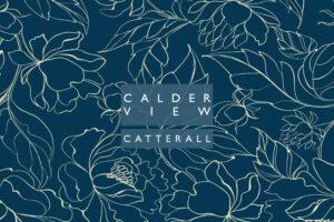 Calder Cover2